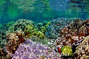 Island of Hawaii, Kapoho 2